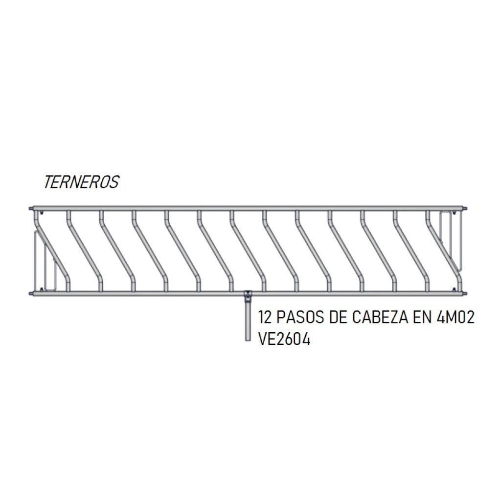 PASO CABEZA 12