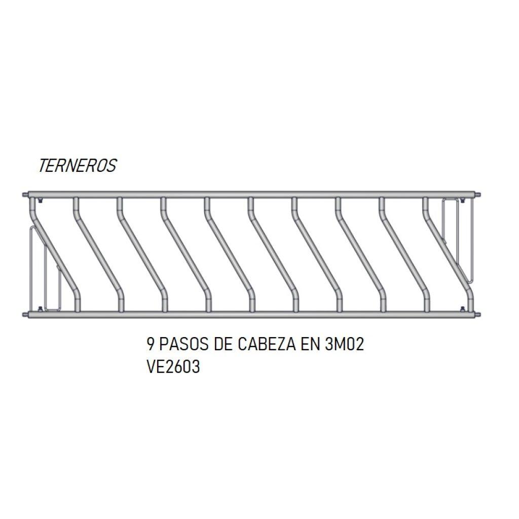 PASO CABEZA 9